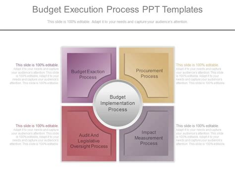 Budget Presentation Templates by Budget Execution Process Ppt Templates