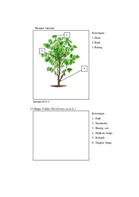 contoh laporan voip diagram bunga markisa image collections how to guide and