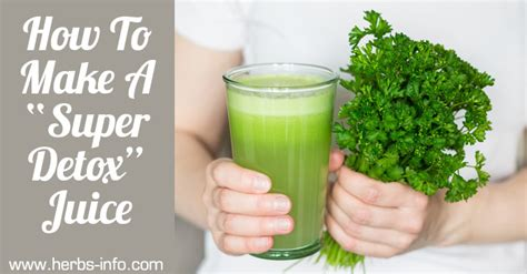 How To Make Cilantro Detox Drink by How To Make A Quot Detox Juice Quot Herbs Info