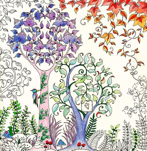 secret garden colouring book coloured in johanna basford enchanted forest secret garden addictive
