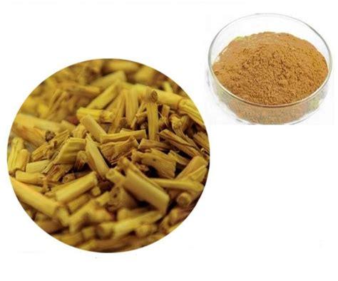 Herbal Radang Ginjal Akar Alang Alang Segar tanaman alang alang sebagai obat tradisional bibitbunga