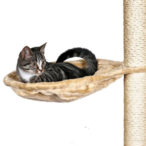 Hamac A Chat by Hamac Arbre 224 Chat 40 Cm Toutenchat