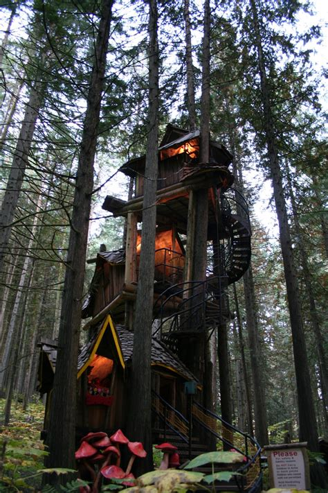 the coolest tree houses in the world matador network