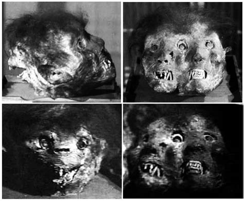 japan section 731 real life is horror three headed japanese demon mummy