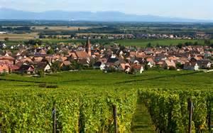 la route des vins d alsace alsace tourisme