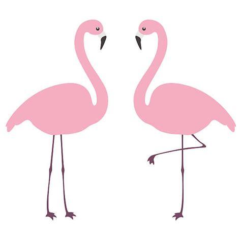 flamingo clip royalty free flamingo clip vector images