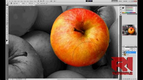 photoshop cs5 tutorial color splash effect how to create color splash effect adobe photoshop cs5