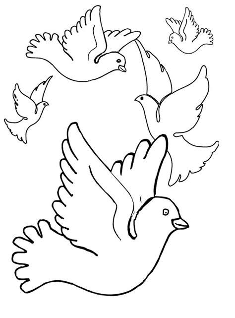 preschool coloring pages birds pigeon coloring page printable bird coloring page preschool