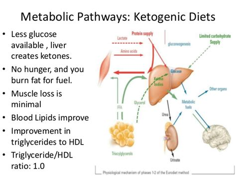 carbohydrates ketosis ketogenic diets