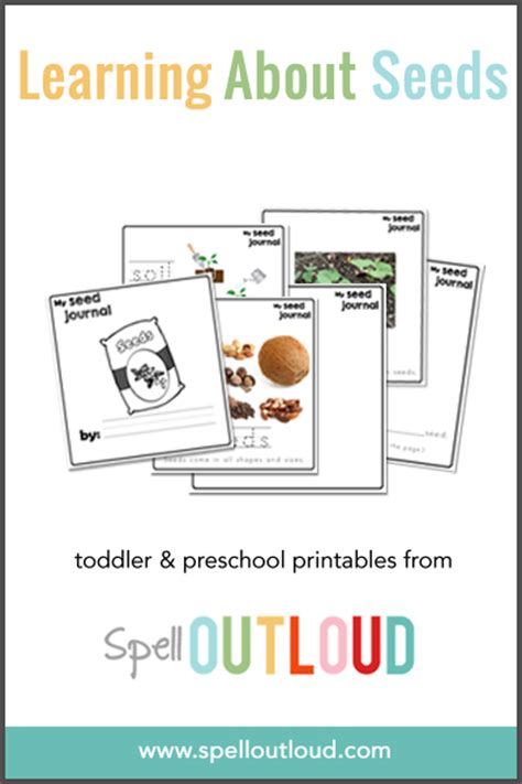 printable seed journal learning about seeds free printable seed journal