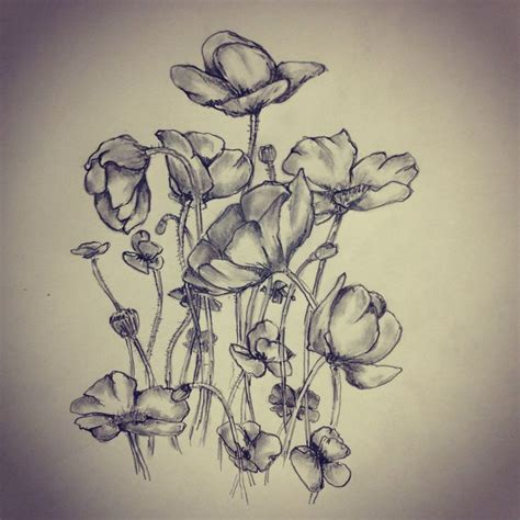 poppies poppy flower tattoo sketch by ranz pinterest
