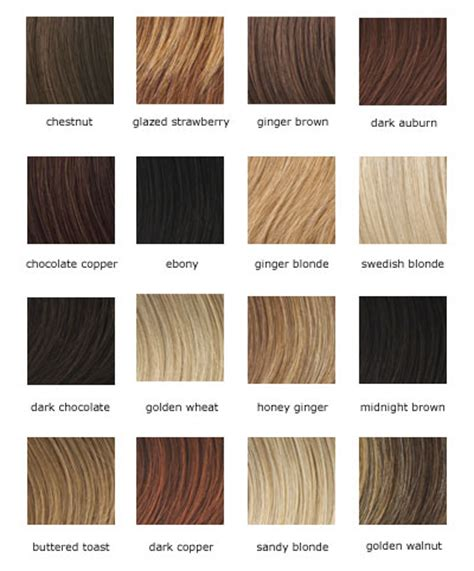 Types Of Color Hair by Fashionable Hair Colors To Choose From