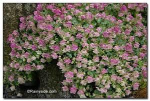 Superb How To Fertilize A Garden Part   14: Superb How To Fertilize A Garden Design