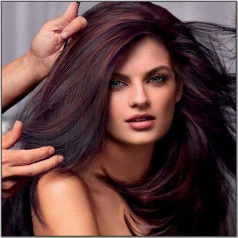 brown cherry hair color best 25 chocolate cherry hair ideas on pinterest black
