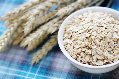 whole grains research americas whole grains improves gut microbiota
