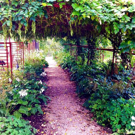 shade garden ideas shade garden design ideas