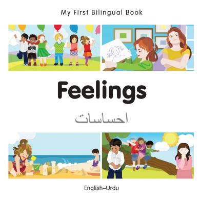 my bilingual book urdu books feelings urdu milet