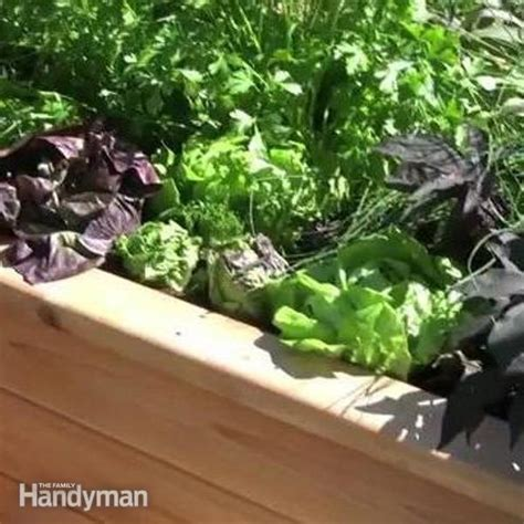 How To Make A Sub Irrigated Planter by How To Build A Sub Irrigated Planter System The Family