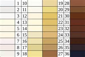 skin color chart file felix luschan skin color chart svg wikimedia