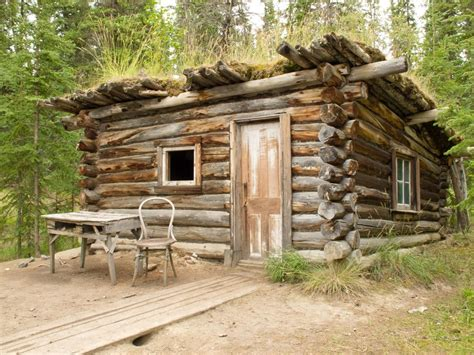 Survival Cabin by How To Build A Basic Cabin Survival Watchdog