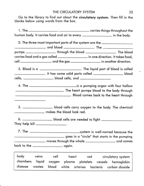 the circulatory system worksheet perryman worksheet the circulatory system