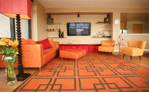 Houzz Living Room Color Schemes Colors Dynamic Elements In Interior Design Home
