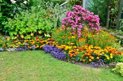 Garden Flowers List A List Of Perennial Flowers From A To Z With Pictures