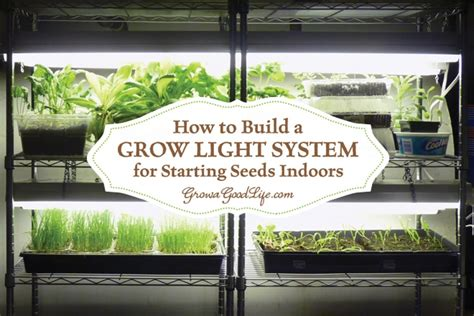 starting seeds indoors lights build a grow light system for starting seeds indoors