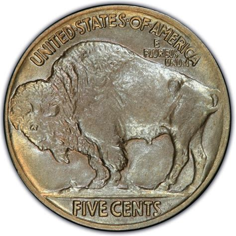 1916 buffalo nickel values and prices past sales coinvalues com