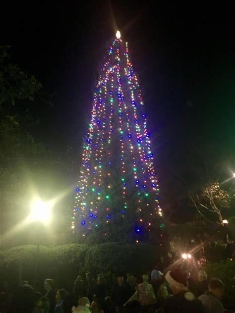 tree lighting song troubadours brighten tree lighting with songs the piedmont highlander