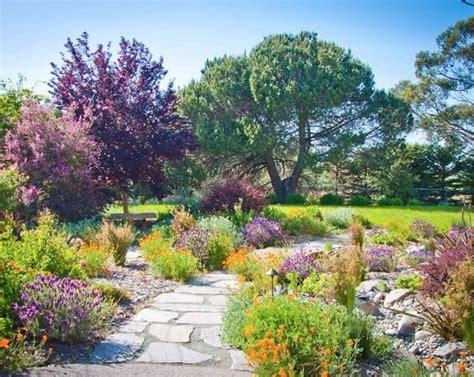 Lavender Garden Ideas Drought Tolerant Landscaping Color Lavender California Poppies Etc 1920 S