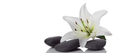 lotus laser spa o jardin des sens les sens en 233 veil
