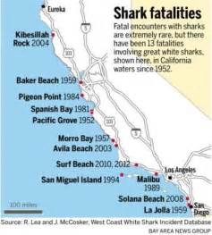 great white sharks may be listed as endangered species