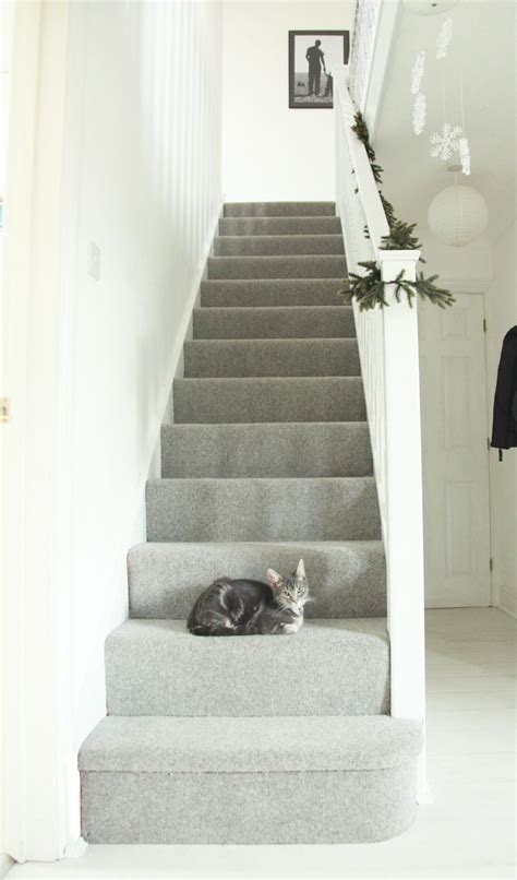 Stairway To Darkness Rug by Light Grey Carpet Lounge Stairs Flooring