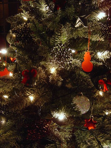 free christmas tree close up stock photo freeimages com