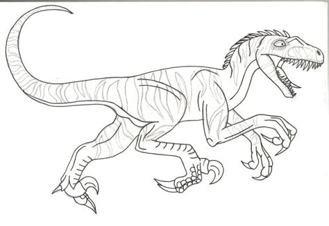free printable velociraptor coloring pages velociraptor coloring page coloring home