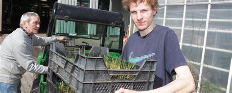 Ausbildung Garten Und Landschaftsbau Werker by Berufsbildungswerk Bethel Werker In Im Gartenbau Stauden