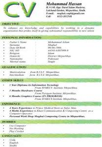 Professional Resume Template Resume Template 2017