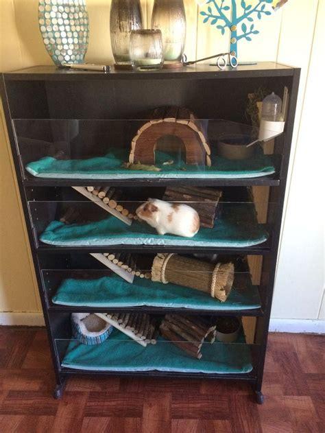 Guinea Pig Cage Shelf by This Is The Guinea Pig Habitat I Made From A Bookshelf