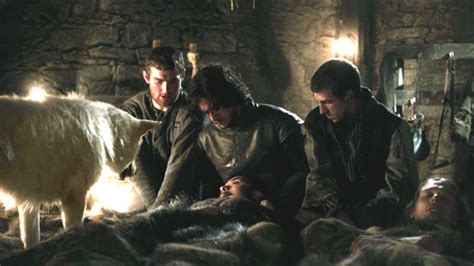 Gamis Wolvis Greeny of thrones direwolves images ghost and jon wallpaper and background photos 29540308