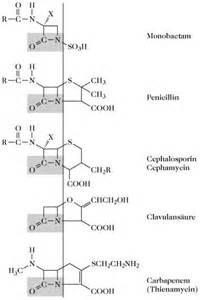 wann wirkt antibiotika bei lungenentzündung wie icillin auf bakterien wirkt mit alkohol