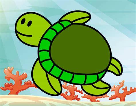 imagenes tiernas de tortugas tortugas tiernas animadas beb 233 s imagui