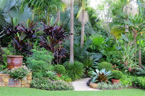 nevell garden tropical garden sydney by garden