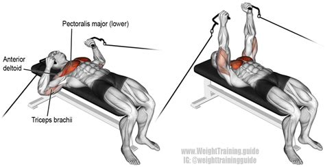 bench press lower back cable bench press exercise instructions and video weight