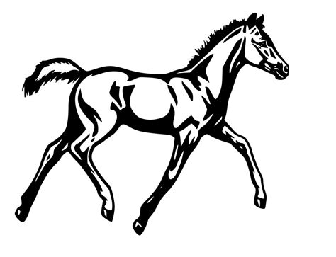 coloring pages of mustang horses how to draw a mustang horse cliparts co