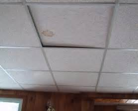 basement ceiling tiles ideas simple diy front yard landscaping house design with
