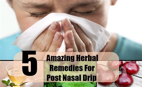 5 amazing herbal remedies for post nasal drip how to