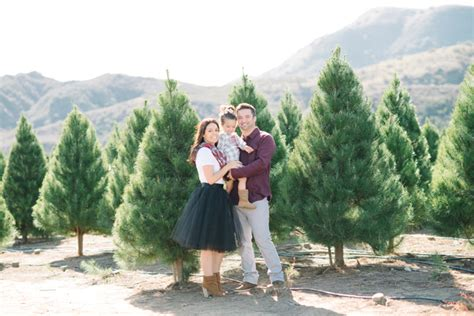 christmas tree farm family portrait irvine