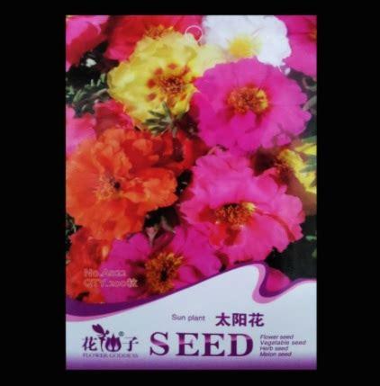 Mossrose Kuning Muda Tanaman Jadi jual bibit benih bunga portulaca mixed isi 200 biji bibitbunga