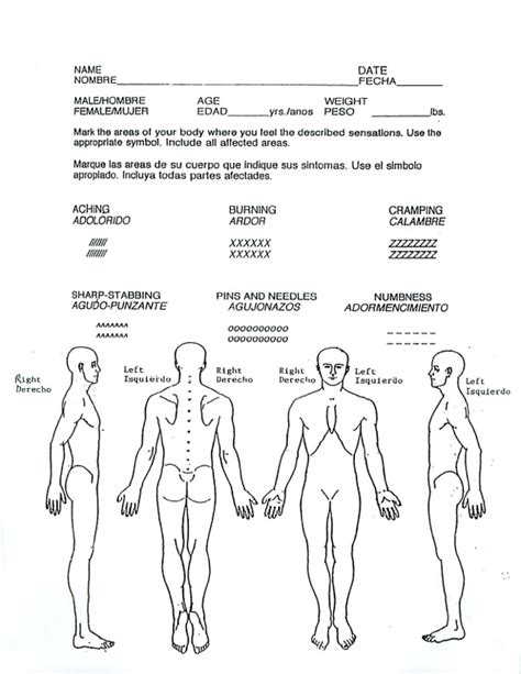 Body Diagram For Injury Report